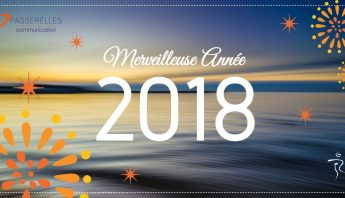 Merveilleuse année 2018 Marianne Subra